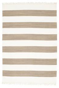Cotton Stripe - Braon Sag 160X230 Autentični  Moderni Ručno Tkani Svjetlosiva/Bijela/Krem (Pamuk, Indija)