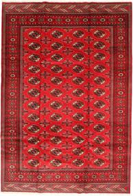 Turkaman Sag 201X293 Autentični Orijentalni Ručno Uzlan Hrđavo Crvena/Tamnocrvena/Grimizno Crvena (Vuna, Perzija/Iran)
