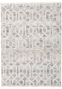 Vanjski Tepih Trinny - Braon/Nature Sag 170X240 Autentični  Moderni Ručno Tkani Svjetlosiva ( Indija)