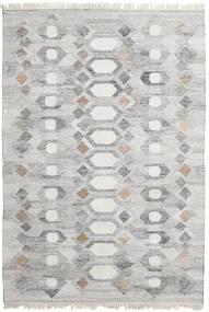 Vanjski Tepih Martha Sag 160X230 Autentični  Moderni Ručno Tkani Svjetlosiva ( Indija)