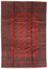 Afghan Sag 200X288 Autentični Orijentalni Ručno Uzlan Tamnocrvena/Tamnosmeđa (Vuna, Afganistan)