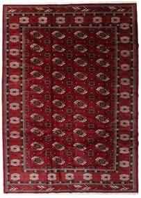 Turkaman Sag 204X285 Autentični Orijentalni Ručno Uzlan Tamnocrvena/Tamnosmeđa (Vuna, Perzija/Iran)