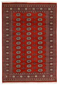 Pakistan Bokhara 2Ply Sag 166X240 Autentični  Orijentalni Ručno Uzlan Crna/Tamnocrvena/Tamnosmeđa (Vuna, Pakistan)